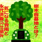 樹木葬墓地とはどんな埋葬形態?費用や永代供養の仕組みを解説