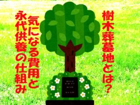 樹木葬墓地の費用や特徴を解説