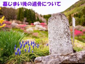 墓じまい後の遺骨の供養方法3選